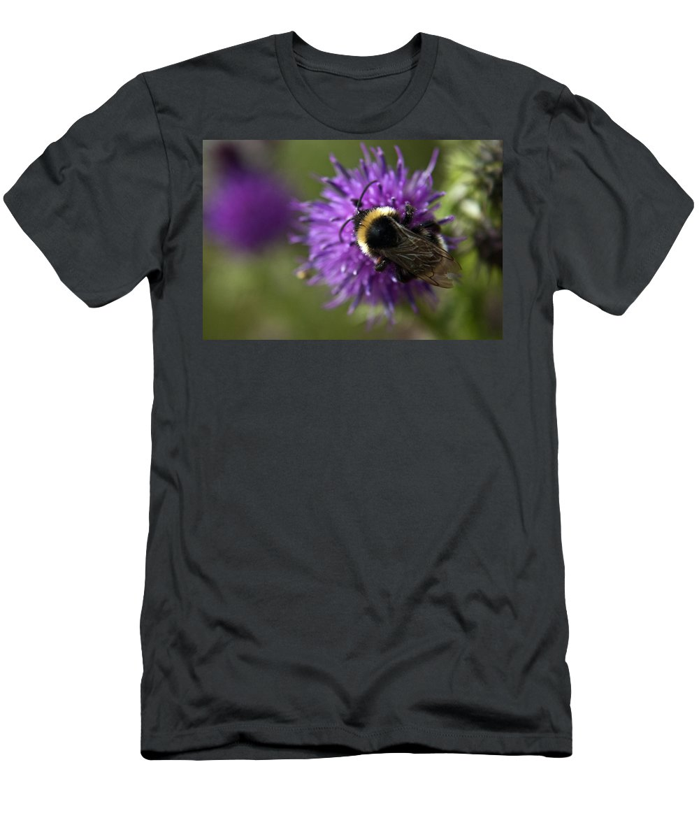 Bee Men's T-Shirt (Athletic Fit) featuring the photograph Bumble Bee by Vicki Field