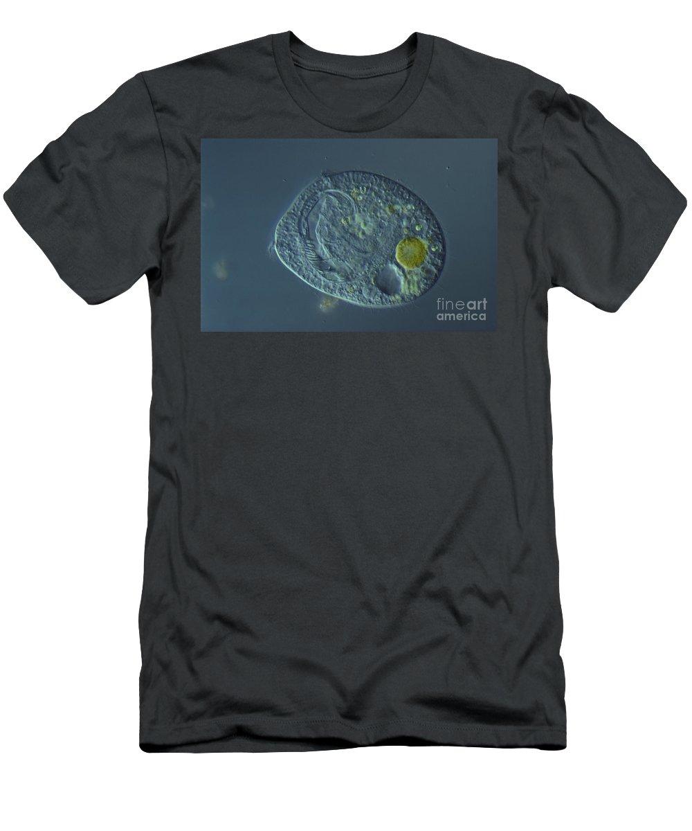 Science Men's T-Shirt (Athletic Fit) featuring the photograph Bursaridium Lm by M. I. Walker