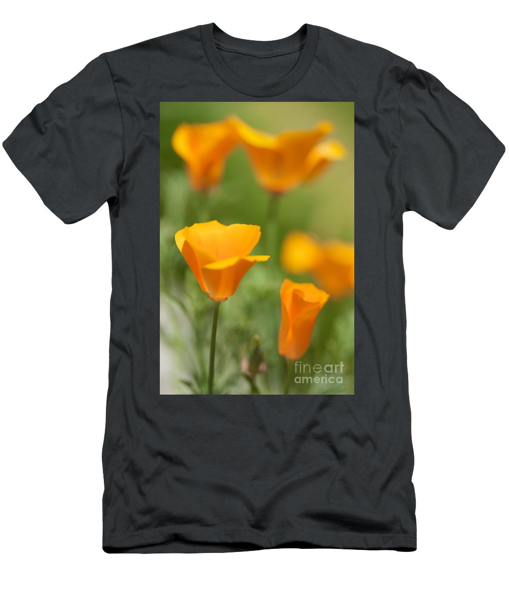 California Poppies Men's T-Shirt (Athletic Fit) featuring the photograph Cal Poppies by Brooke Roby