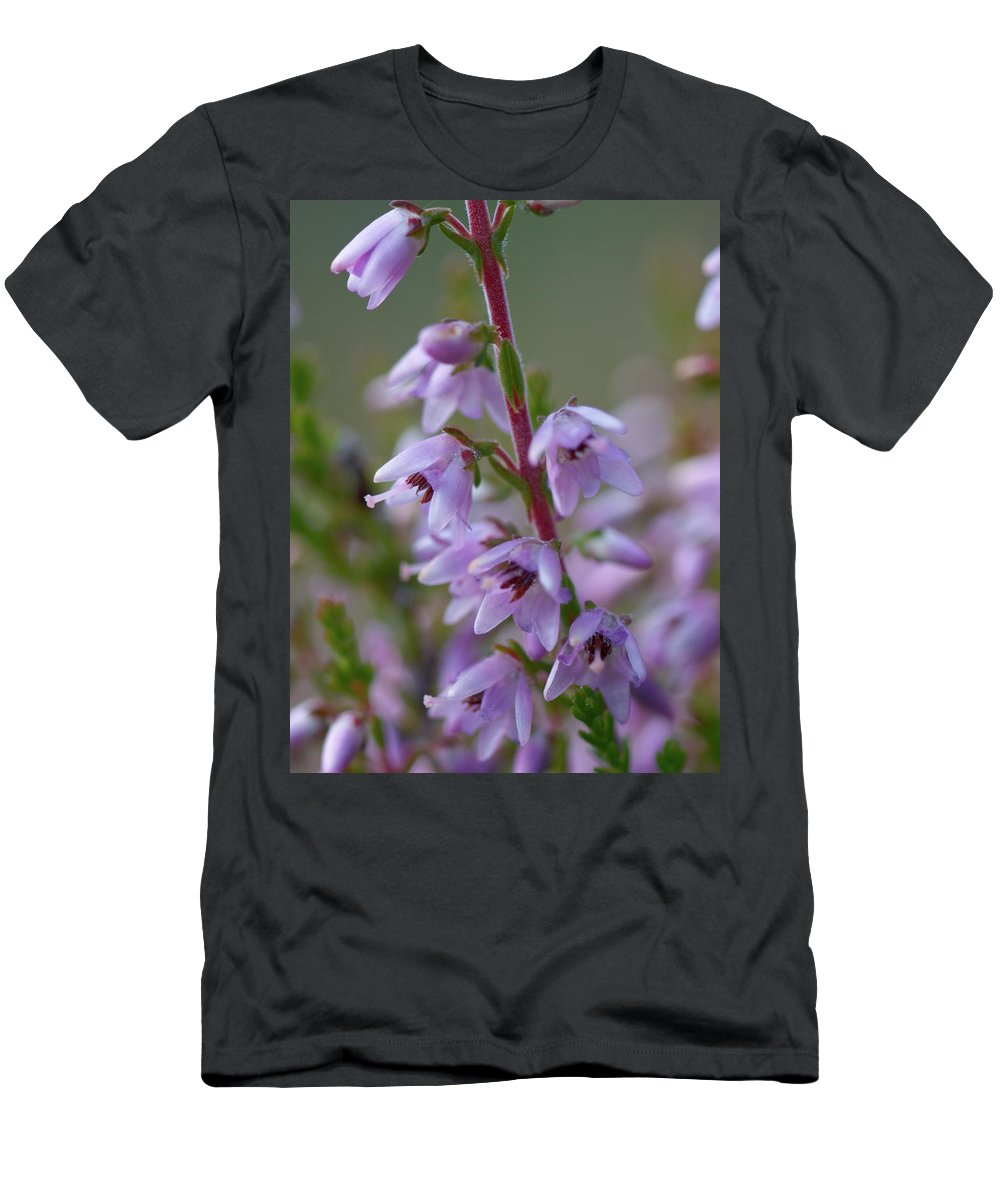 Jouko Lehto Men's T-Shirt (Athletic Fit) featuring the photograph Calluna Vulgaris 4 by Jouko Lehto