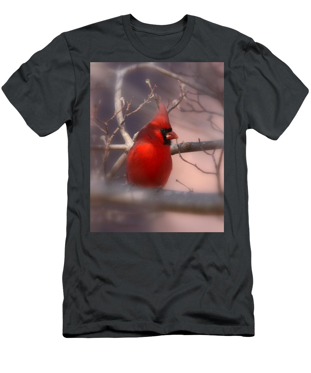 Cardinal Men's T-Shirt (Athletic Fit) featuring the photograph Cardinal - Unafraid by Travis Truelove