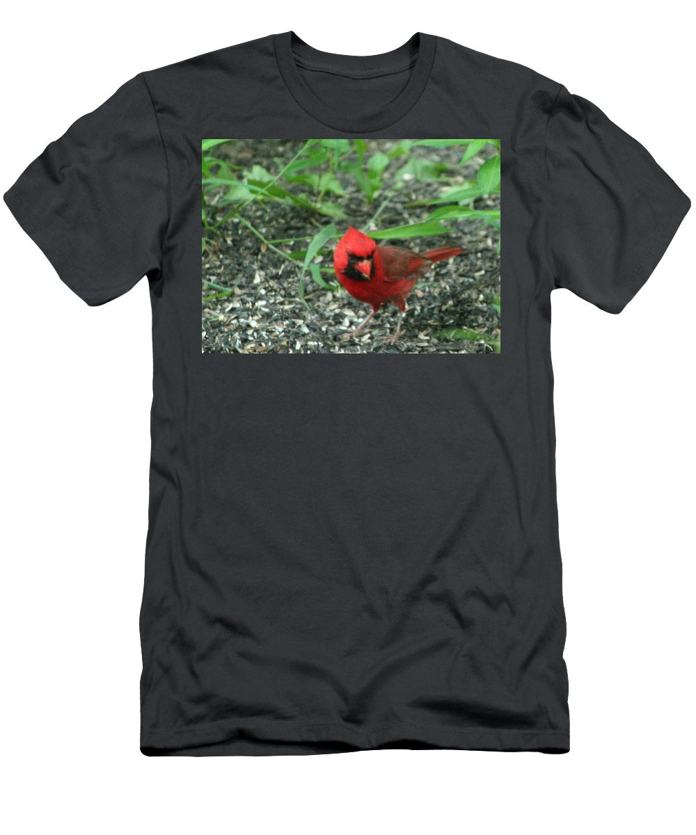 Cardinalis Cardinalis Men's T-Shirt (Athletic Fit) featuring the photograph Cardinal In Springtime by Laurel Talabere