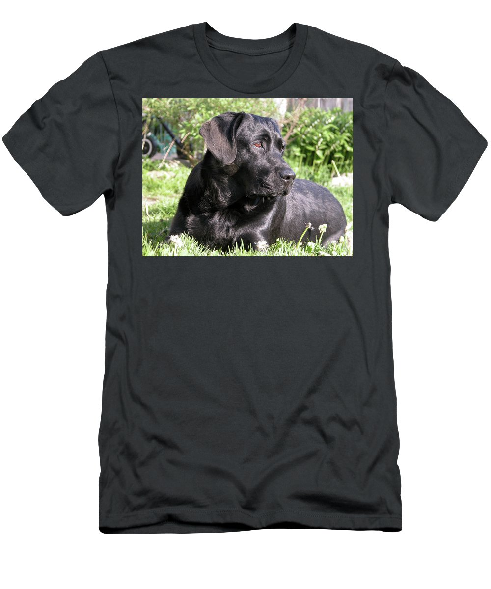 Dog Men's T-Shirt (Athletic Fit) featuring the photograph Chicago 0085 by Guy Whiteley