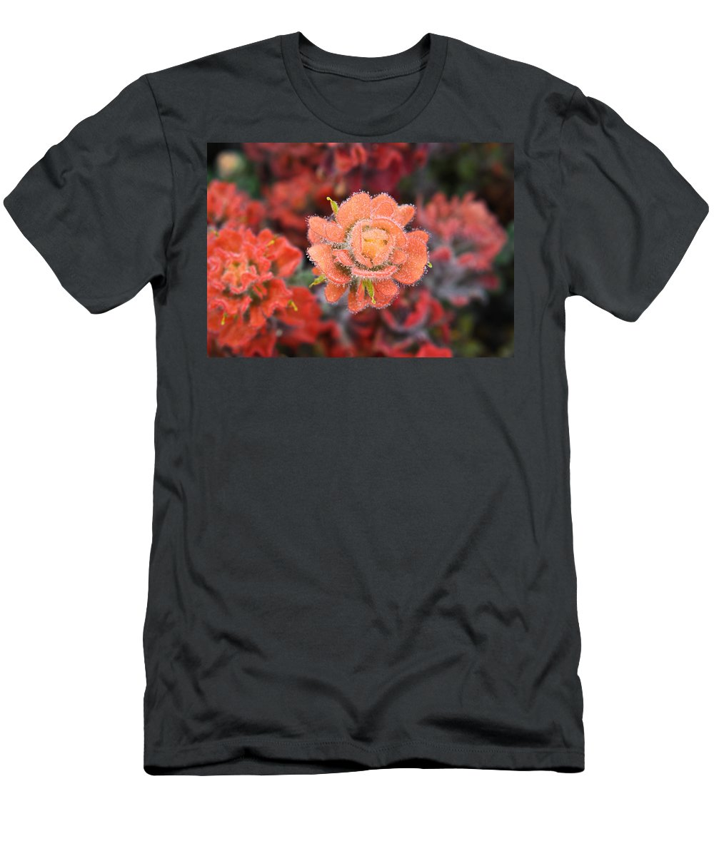 Flowers Men's T-Shirt (Athletic Fit) featuring the photograph Coastline Color by Diane Bohna