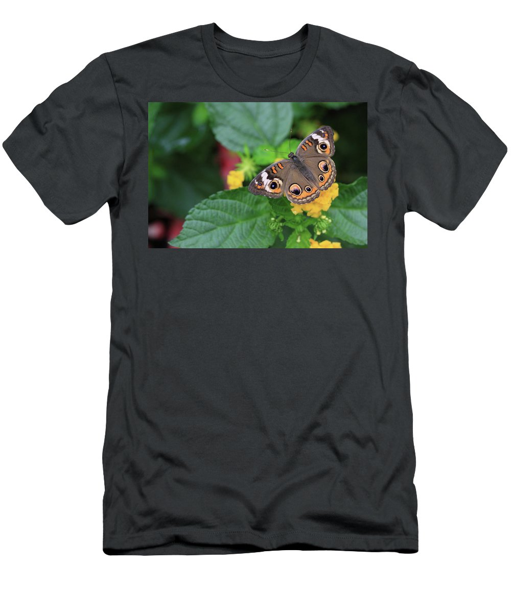 Flowers Men's T-Shirt (Athletic Fit) featuring the photograph Common Buckeye II by Rick Berk