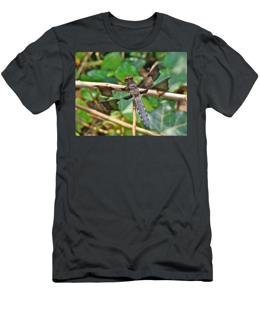 Dragonfly Men's T-Shirt (Athletic Fit) featuring the photograph Common Whitetail Dragonfly - Plathemis Lydia - Male by Mother Nature