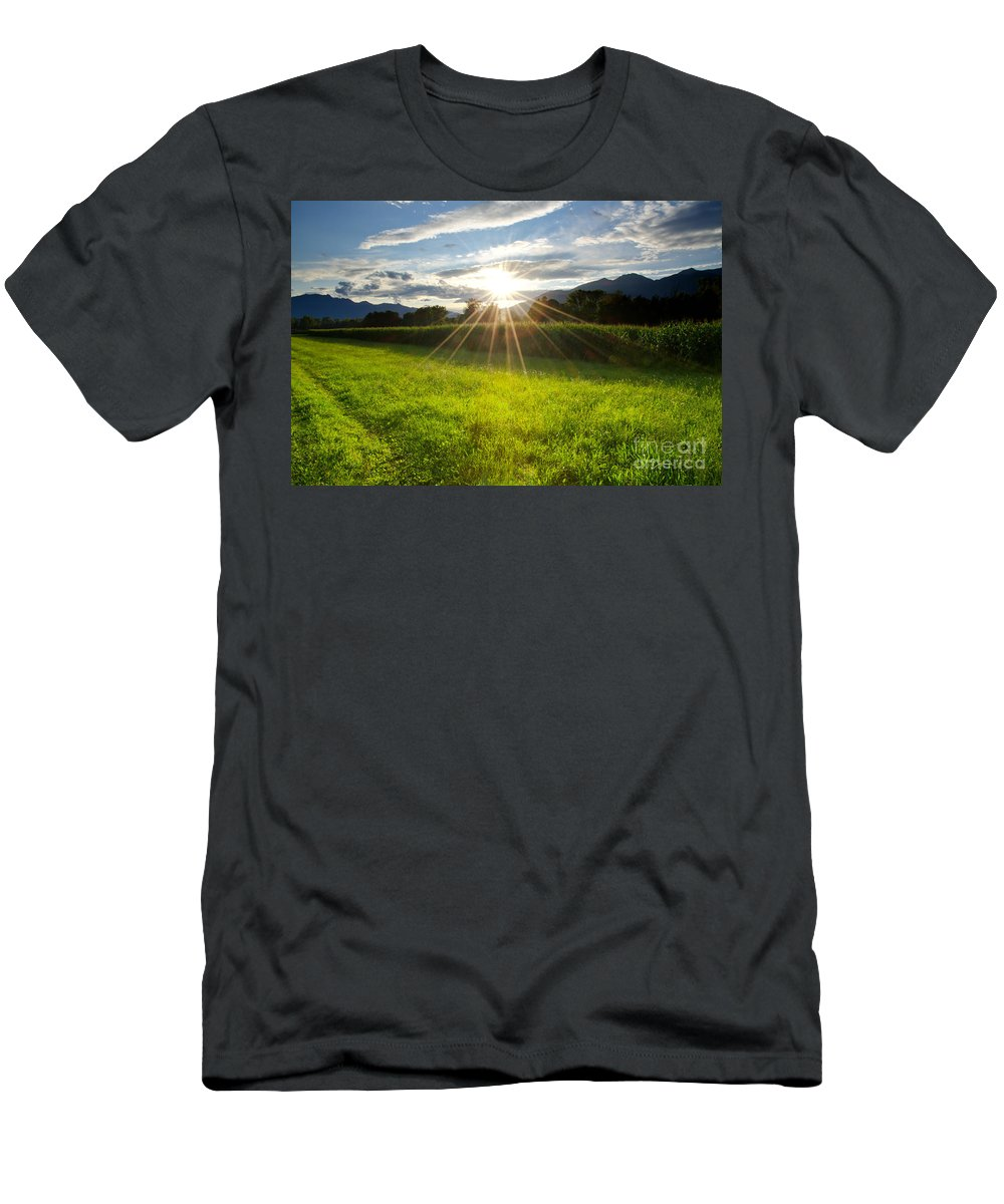 Corn Men's T-Shirt (Athletic Fit) featuring the photograph Corn Field In Backlight by Mats Silvan