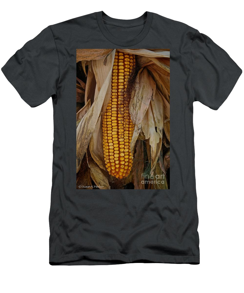 Outdoors Men's T-Shirt (Athletic Fit) featuring the photograph Corn Stalks by Susan Herber