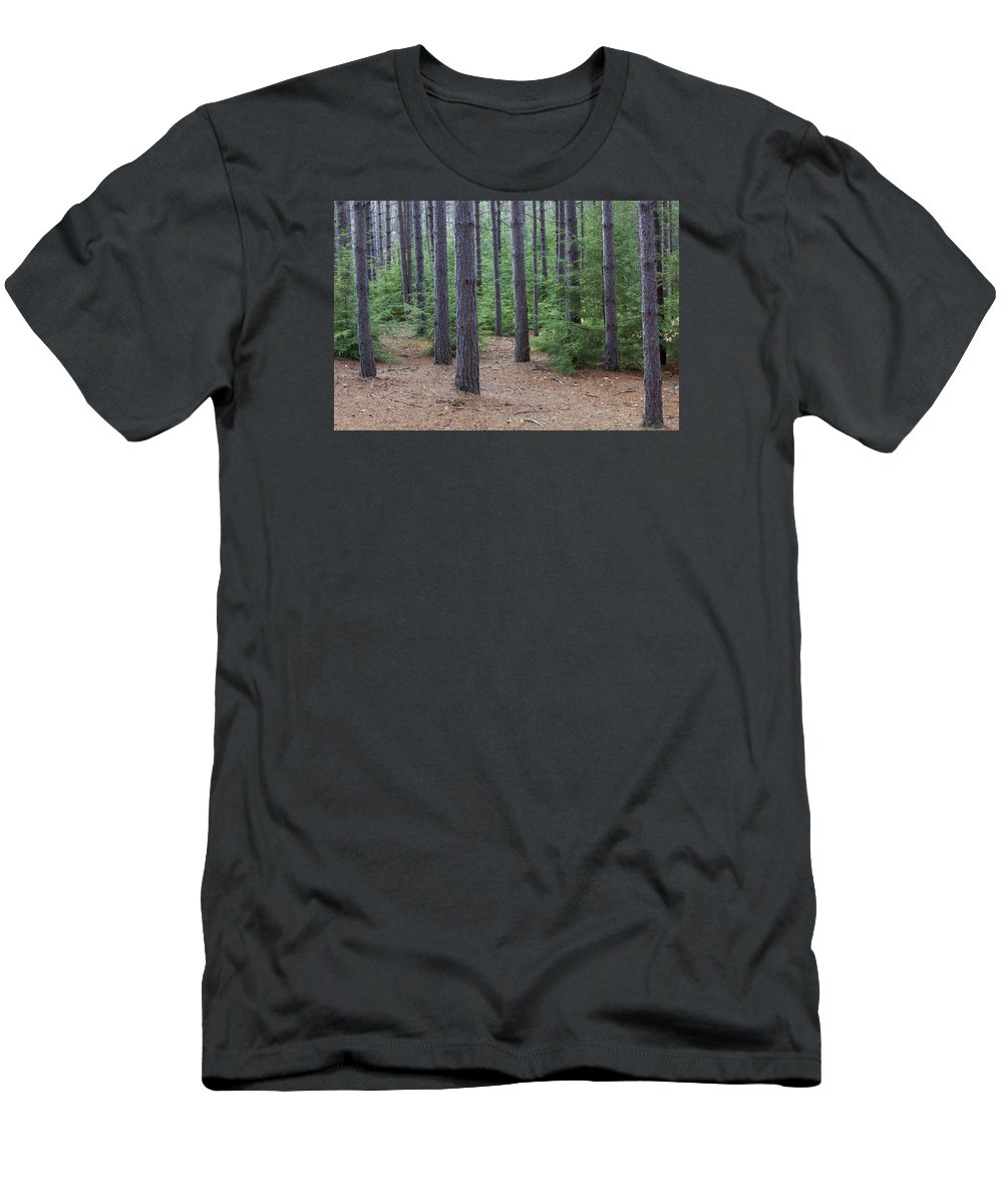 Conifer Men's T-Shirt (Athletic Fit) featuring the photograph Cozy Conifer Forest by John Stephens