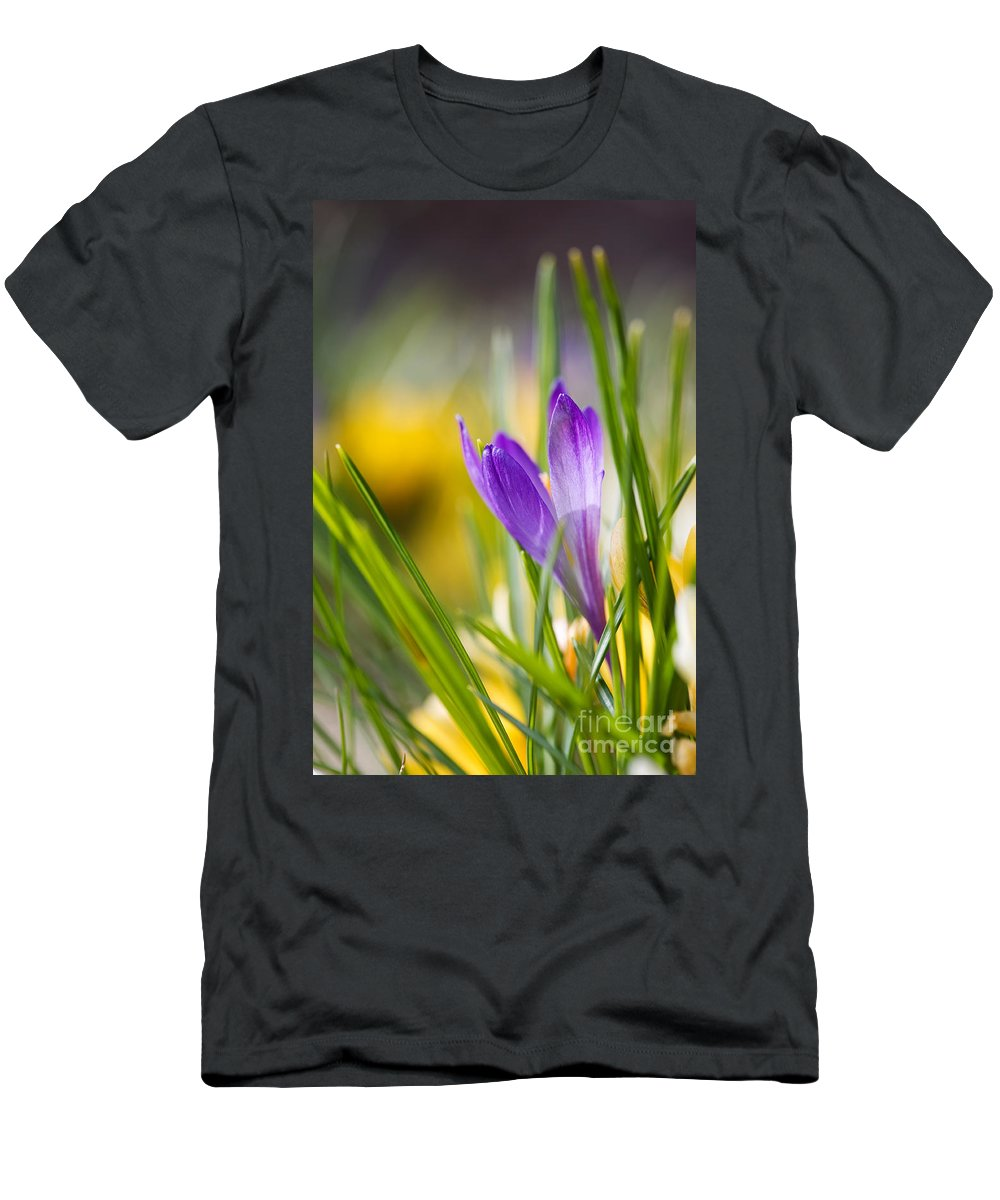 Crocus Men's T-Shirt (Athletic Fit) featuring the photograph Crocuses by Kati Finell