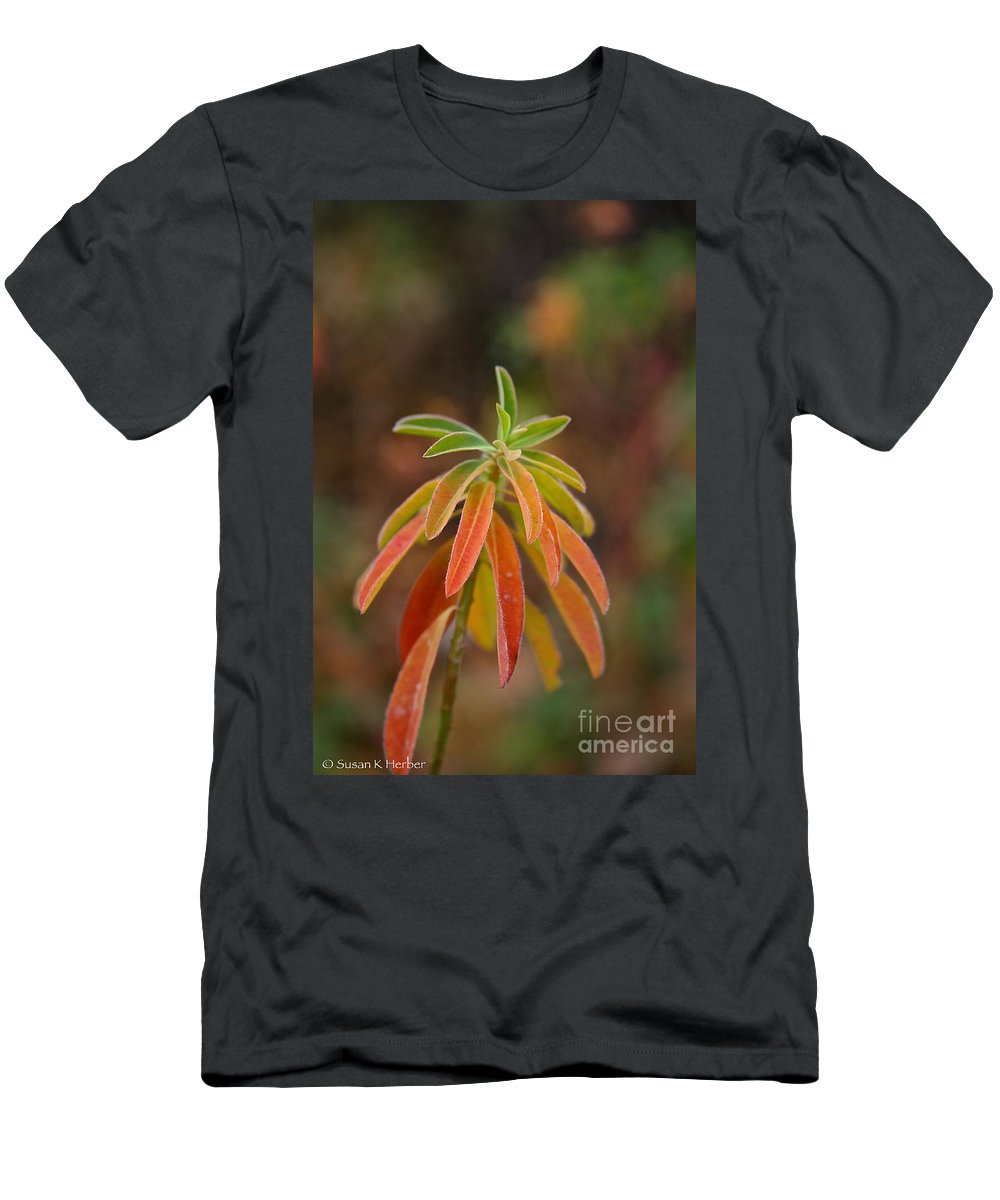 Flower Men's T-Shirt (Athletic Fit) featuring the photograph Cushion Spurge by Susan Herber