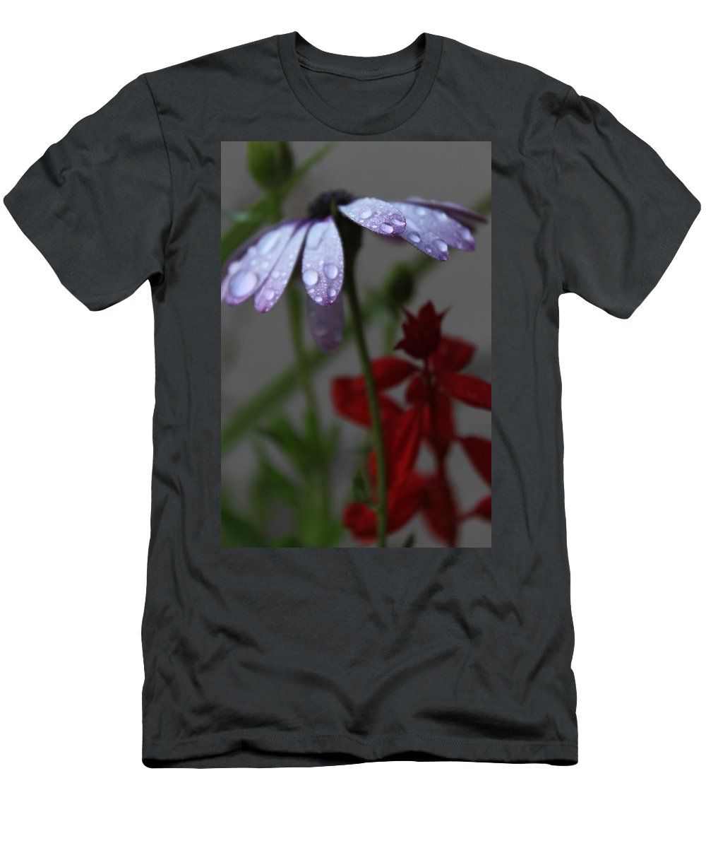 Daisy Men's T-Shirt (Athletic Fit) featuring the photograph Daisy Drops by Lauri Novak