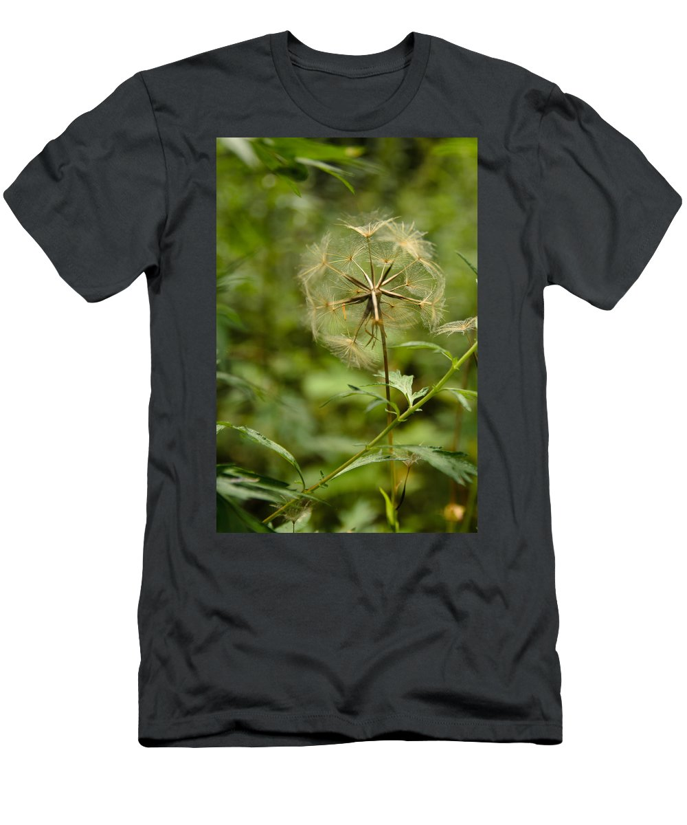 Blowball Men's T-Shirt (Athletic Fit) featuring the photograph Dandelion by Michael Goyberg