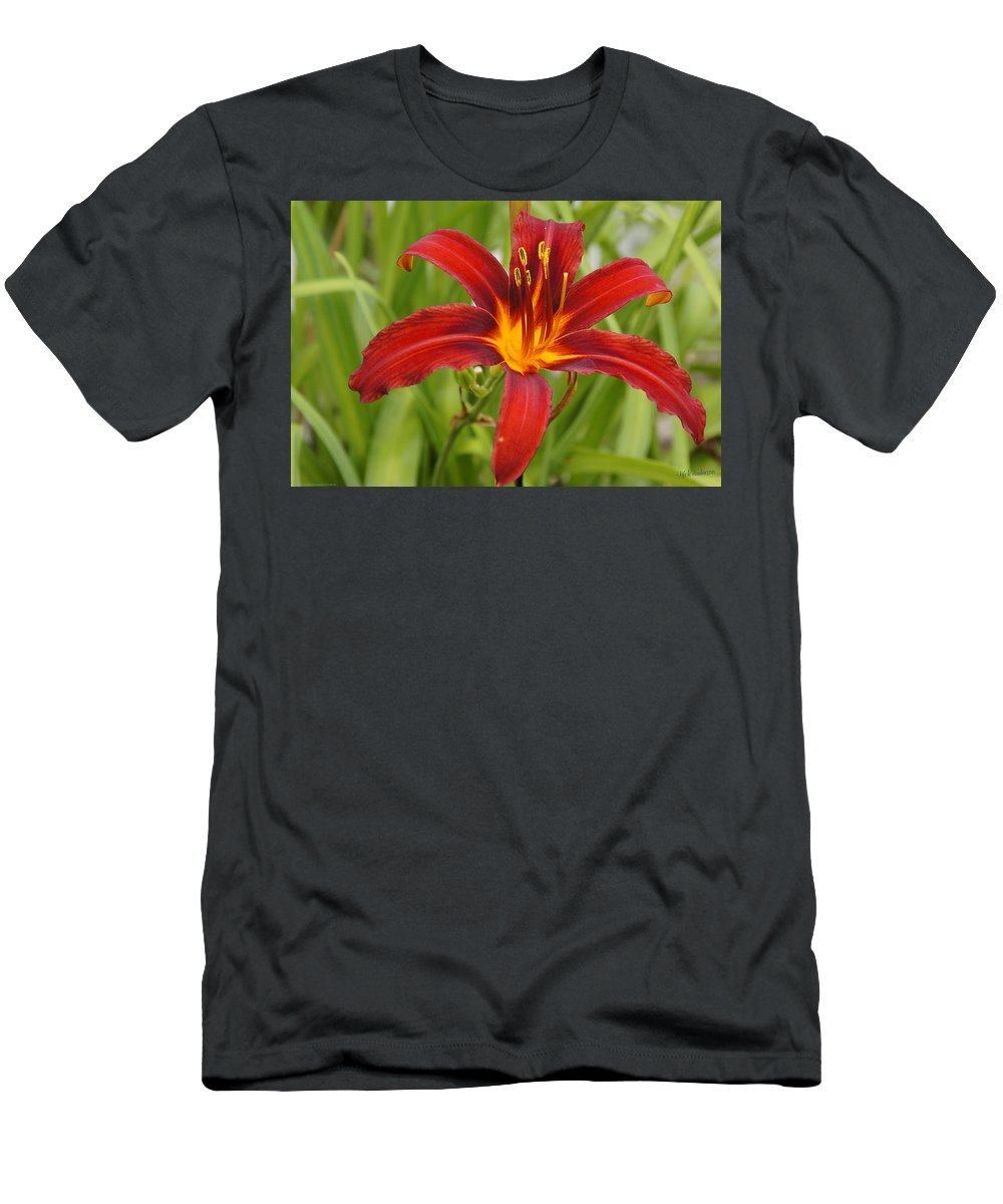 Day Lilly Men's T-Shirt (Athletic Fit) featuring the photograph Day Lilly In Diffused Daylight by Mick Anderson
