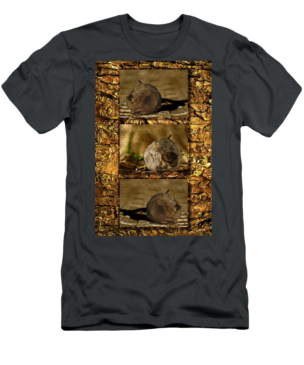 Rosebud Men's T-Shirt (Athletic Fit) featuring the photograph Dead Rosebud Triptych by Steve Purnell