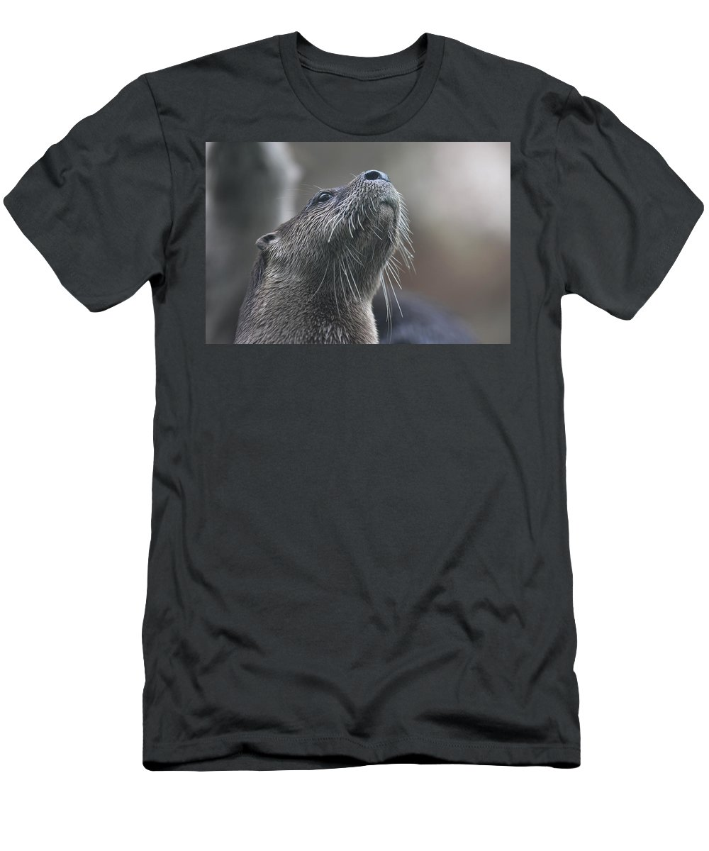 Otter Men's T-Shirt (Athletic Fit) featuring the photograph Distraction by Joan Kerns