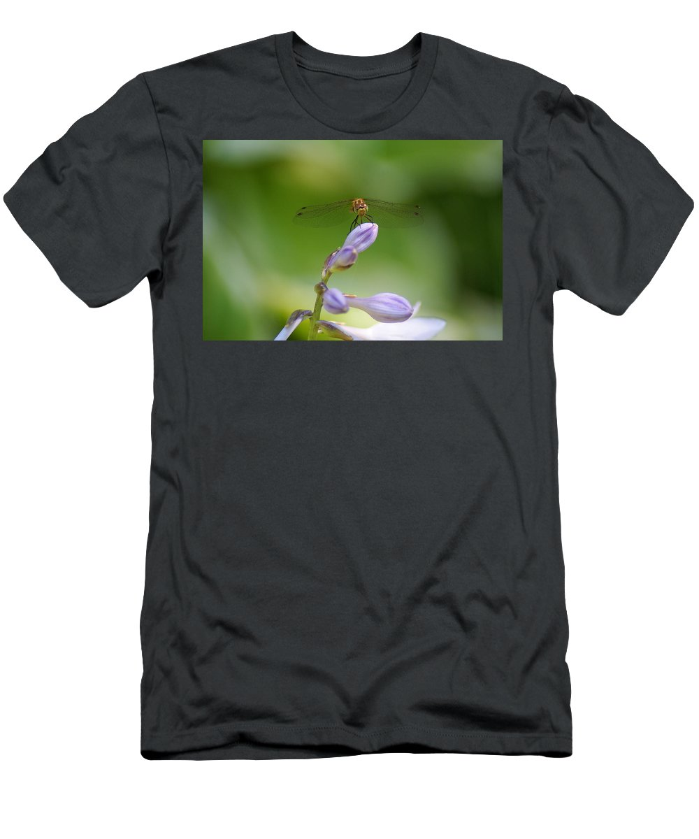 Dragonflies Men's T-Shirt (Athletic Fit) featuring the photograph Dragonfly Connection by Ben Upham III