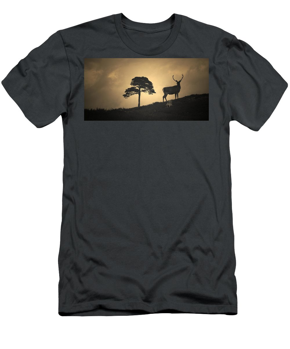 Red Deer Silhouette Men's T-Shirt (Athletic Fit) featuring the photograph Dreaming Of Tomorrow by Gavin Macrae