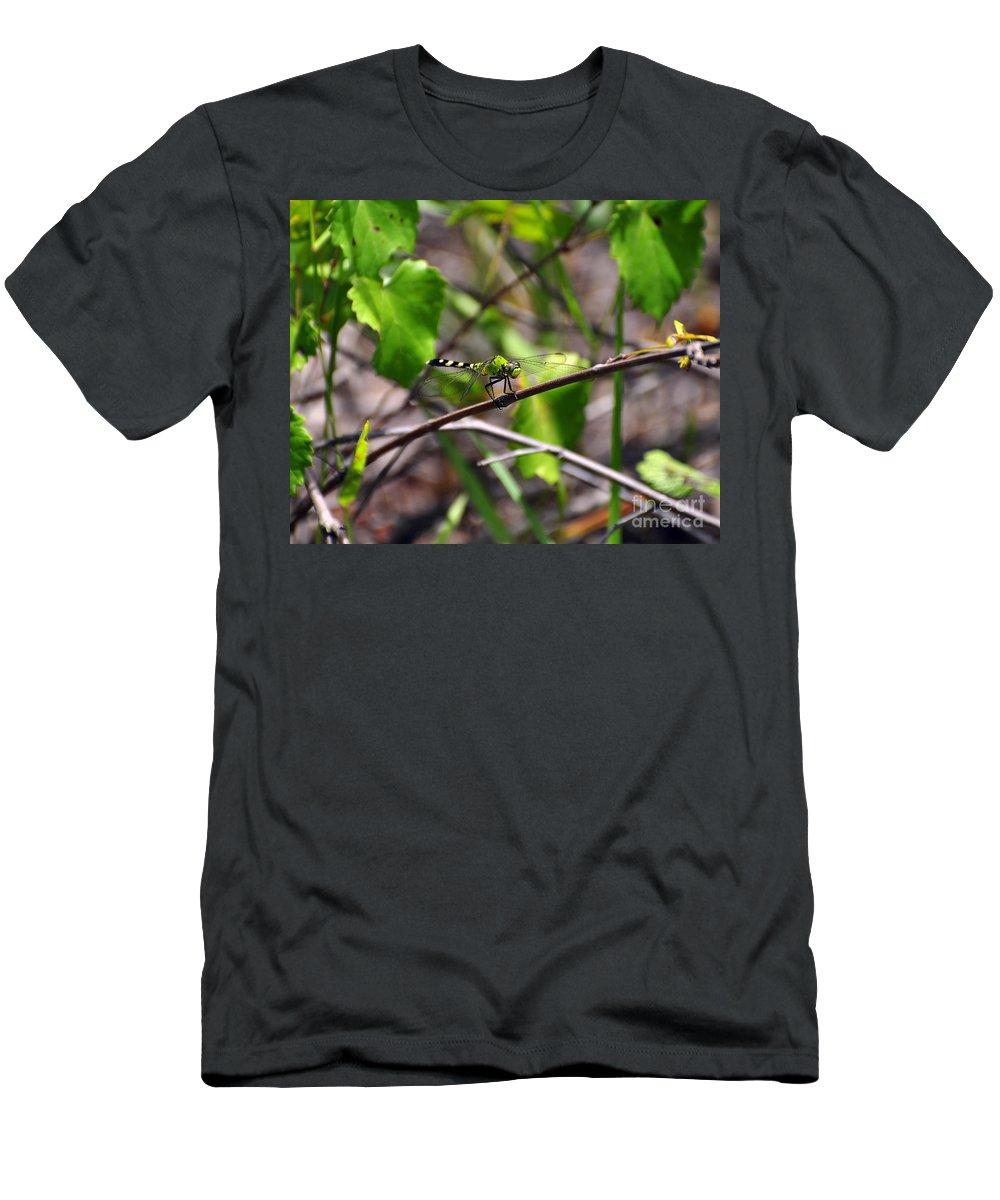 Dragonfly Men's T-Shirt (Athletic Fit) featuring the photograph Eastern Pondhawk by Al Powell Photography USA