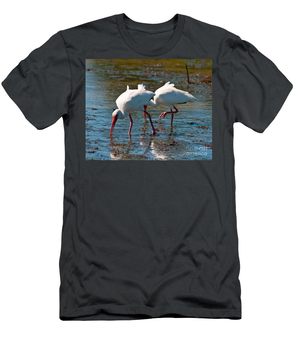 Terns Men's T-Shirt (Athletic Fit) featuring the photograph Feeding Time by Stephen Whalen