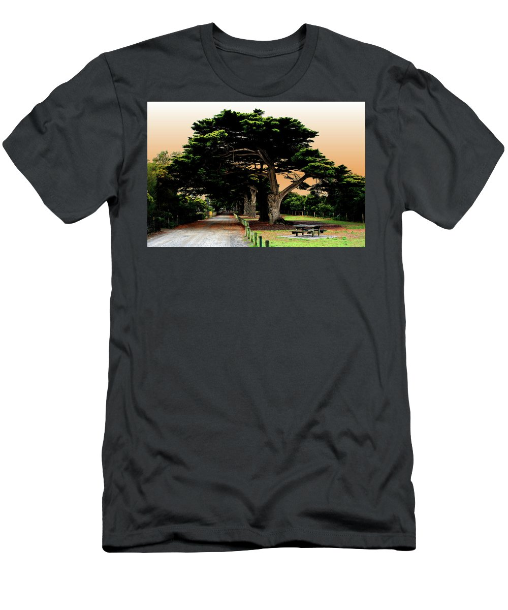 Fig Trees Men's T-Shirt (Athletic Fit) featuring the photograph Fig Tree Lane by Douglas Barnard