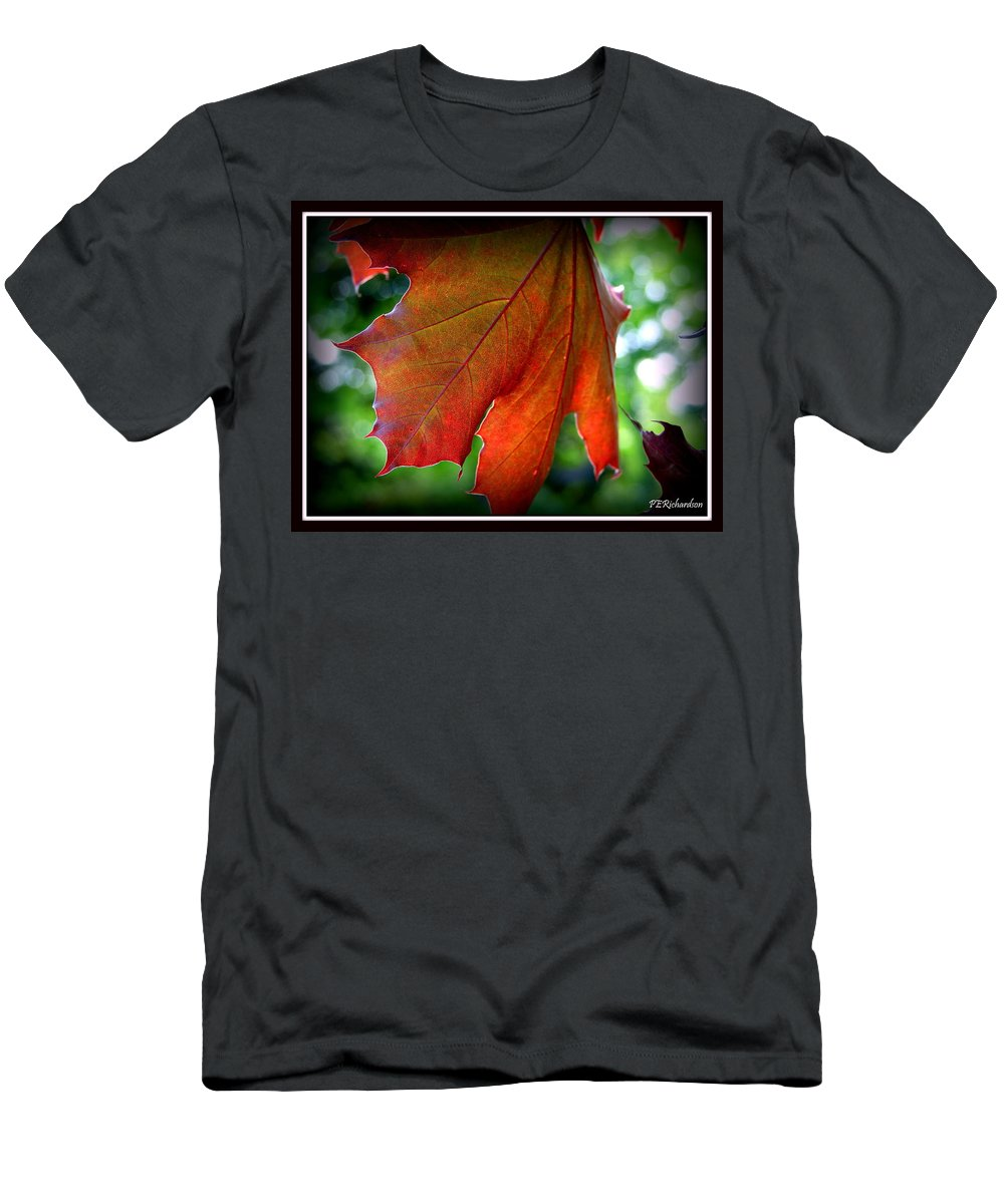Autumn Men's T-Shirt (Athletic Fit) featuring the photograph Fleeting by Priscilla Richardson