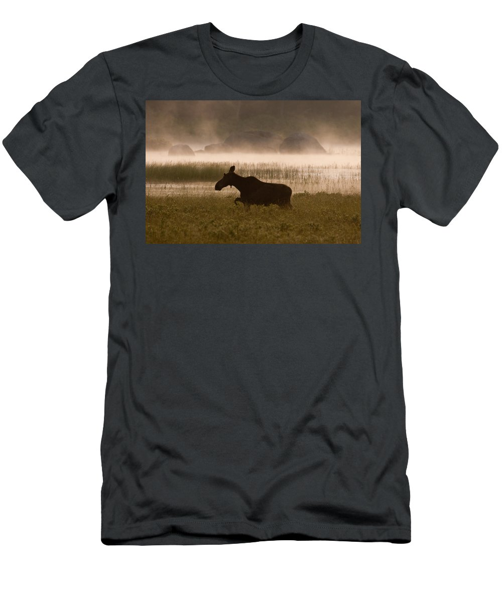 Moose Men's T-Shirt (Athletic Fit) featuring the photograph Foggy Stroll by Brent L Ander