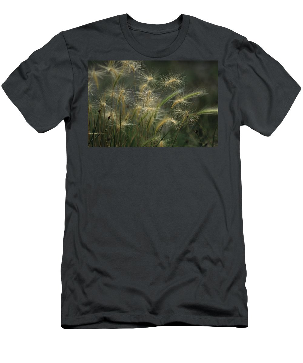 Foxtail Barley Men's T-Shirt (Athletic Fit) featuring the photograph Foxtail Barley by One Rude Dawg Orcutt