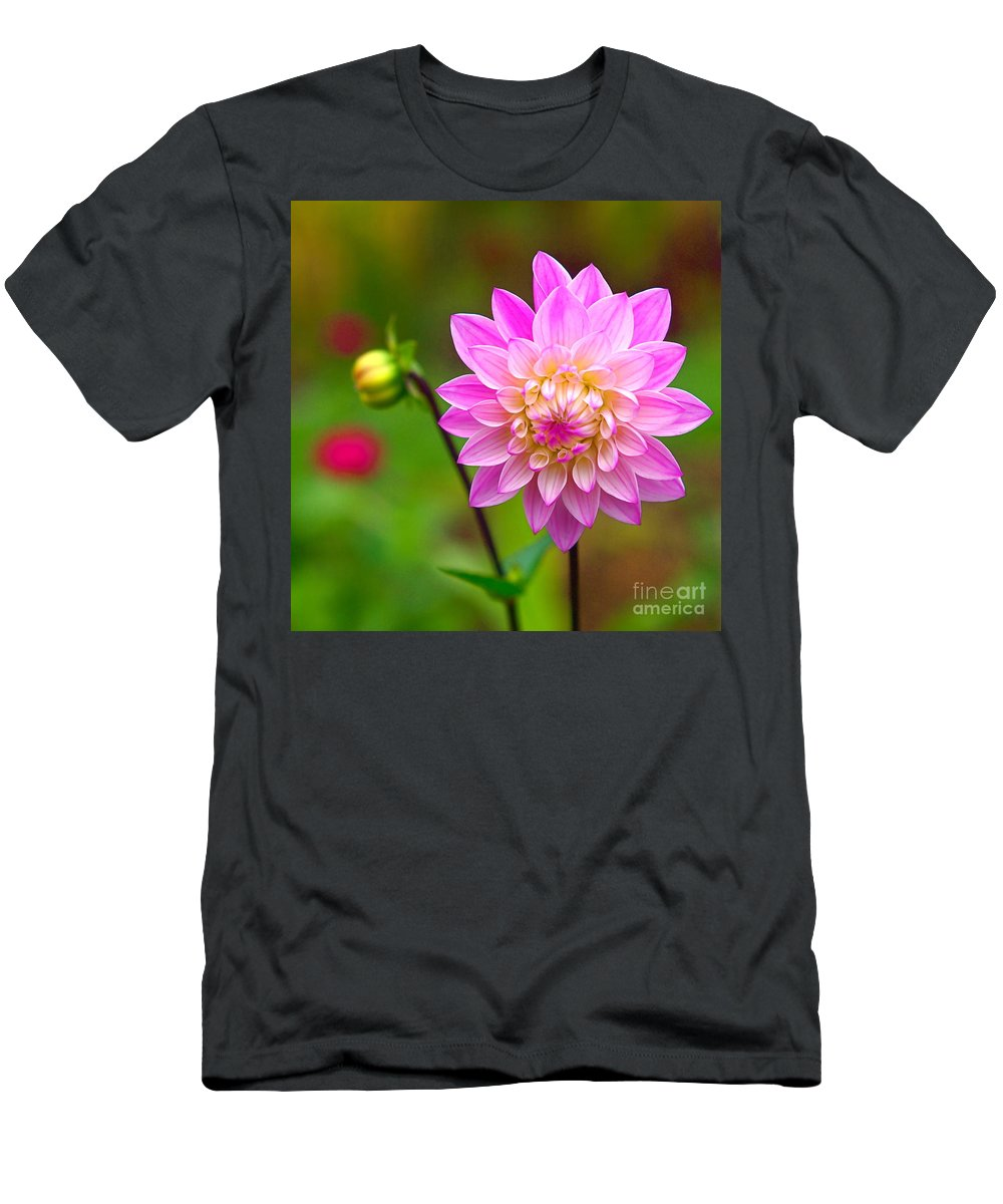 Dahlia Men's T-Shirt (Athletic Fit) featuring the photograph Fresh As A Daisy by Byron Varvarigos