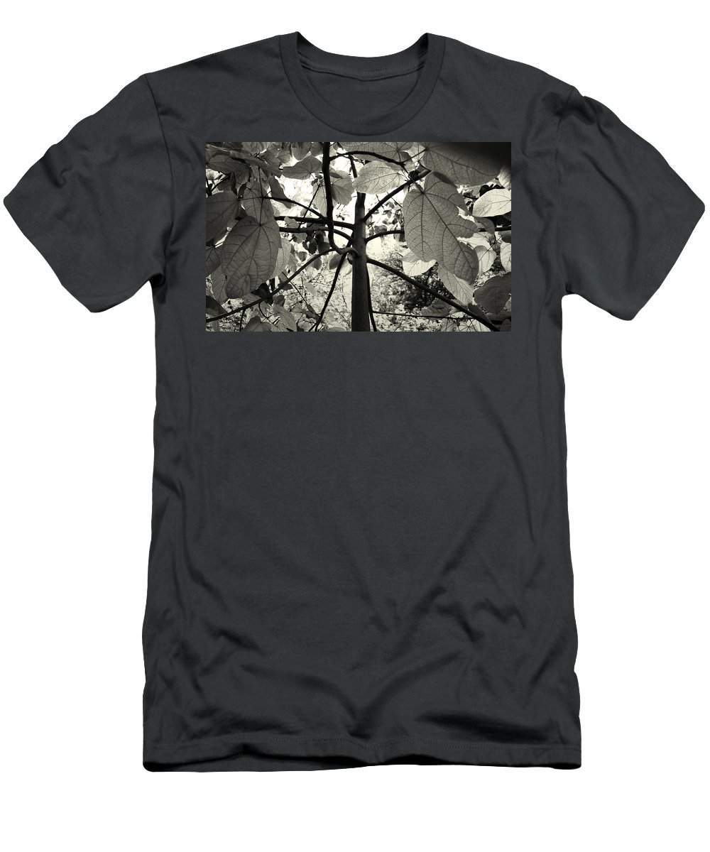 Flowers Men's T-Shirt (Athletic Fit) featuring the photograph From The Inside by Sumit Mehndiratta