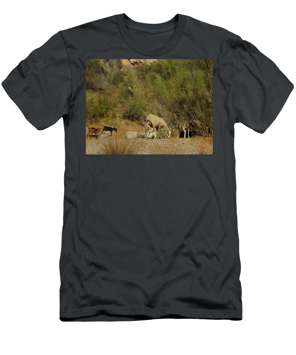 Colette Men's T-Shirt (Athletic Fit) featuring the photograph Goat Meeting In Spain by Colette V Hera Guggenheim