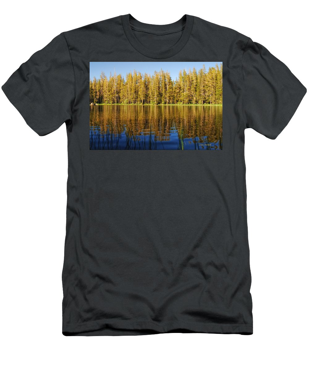 Forest Men's T-Shirt (Athletic Fit) featuring the photograph Golden Days by Donna Blackhall