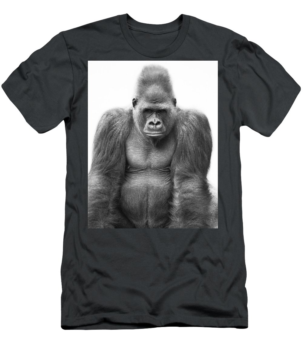 Outdoors Men's T-Shirt (Athletic Fit) featuring the photograph Gorilla by Darren Greenwood