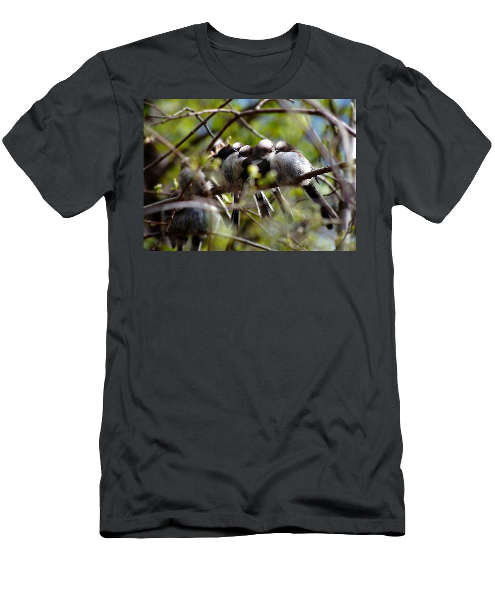 Long-tailed Tits Men's T-Shirt (Athletic Fit) featuring the photograph Gossip Birds by Gavin Macrae