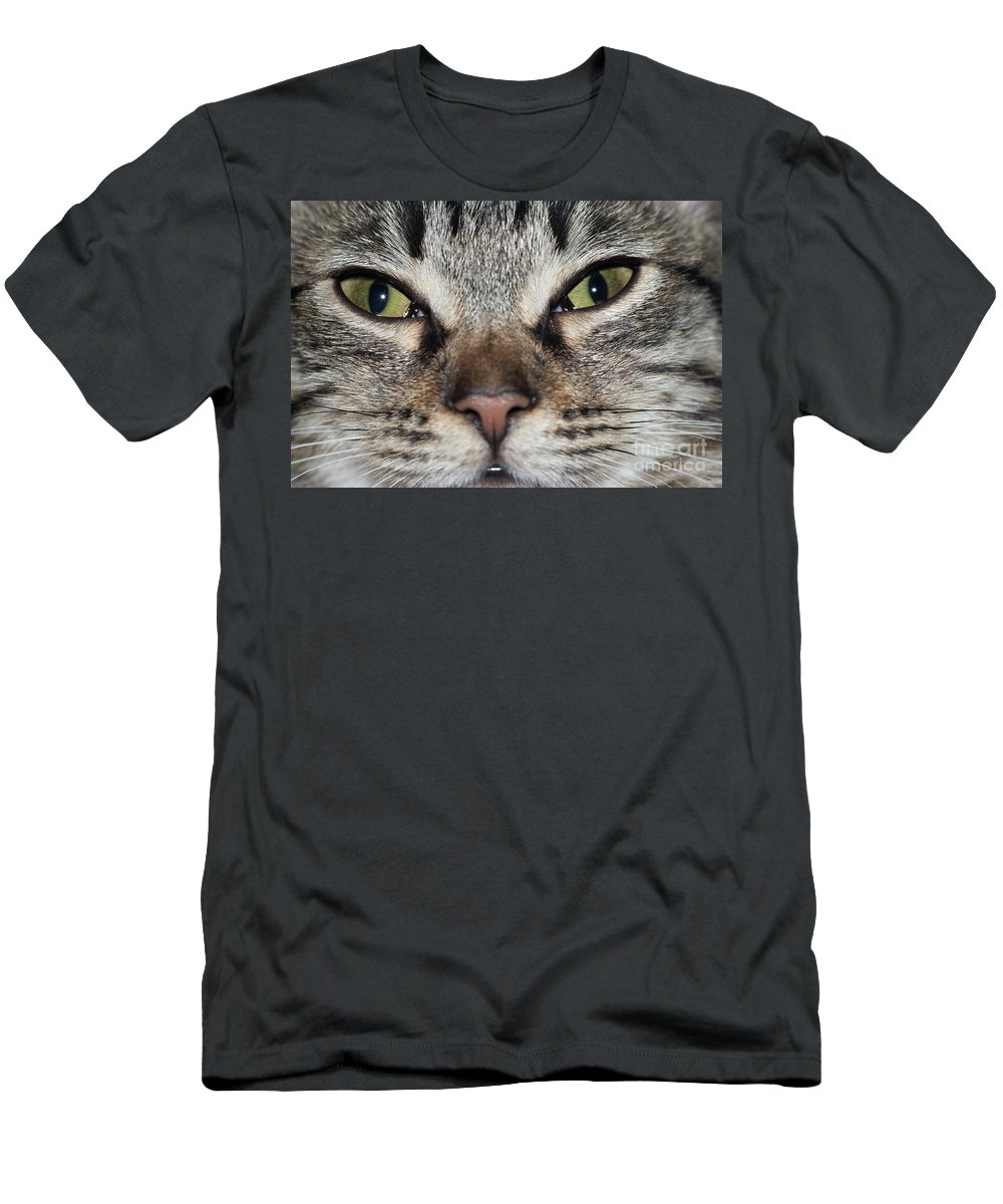 Cat Men's T-Shirt (Athletic Fit) featuring the photograph Green Eyes by Michal Boubin