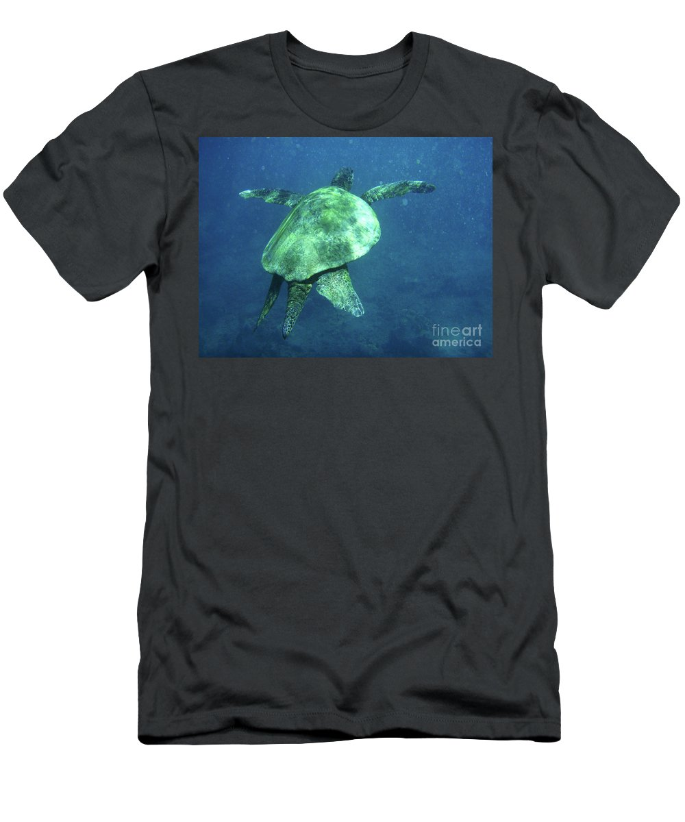 Green Men's T-Shirt (Athletic Fit) featuring the photograph Green Sea Turtle 1 by Bob Christopher