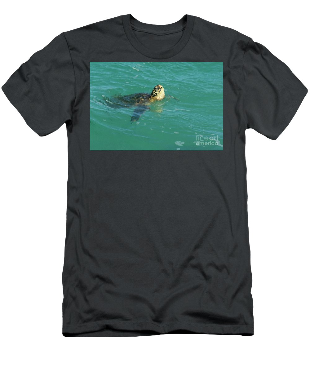 Green Men's T-Shirt (Athletic Fit) featuring the photograph Green Sea Turtle 4 by Bob Christopher