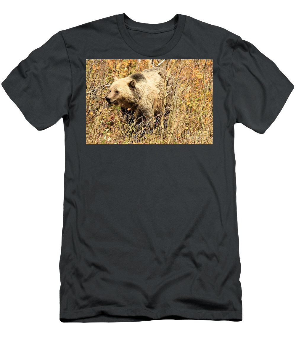 Grizzly Bear Men's T-Shirt (Athletic Fit) featuring the photograph Grizzly In The Brush by Adam Jewell