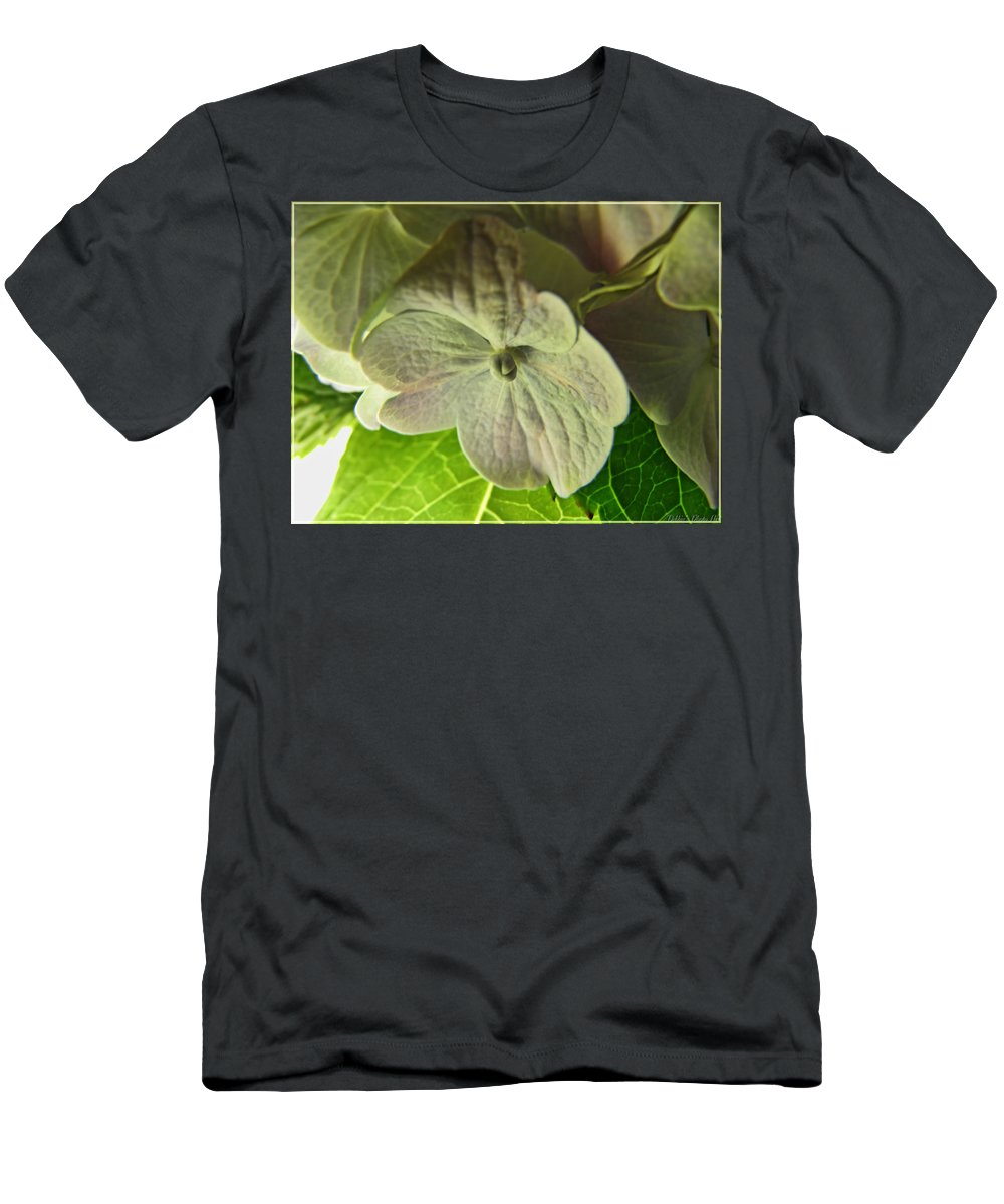 Nature Men's T-Shirt (Athletic Fit) featuring the photograph Hydrangea Macro by Debbie Portwood