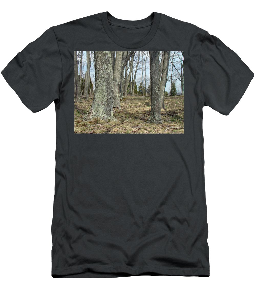 Trees Men's T-Shirt (Athletic Fit) featuring the photograph Imagination Pathway by Mother Nature
