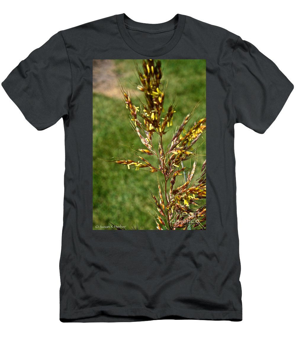 Outdoors T-Shirt featuring the photograph Indian Grass Seed by Susan Herber