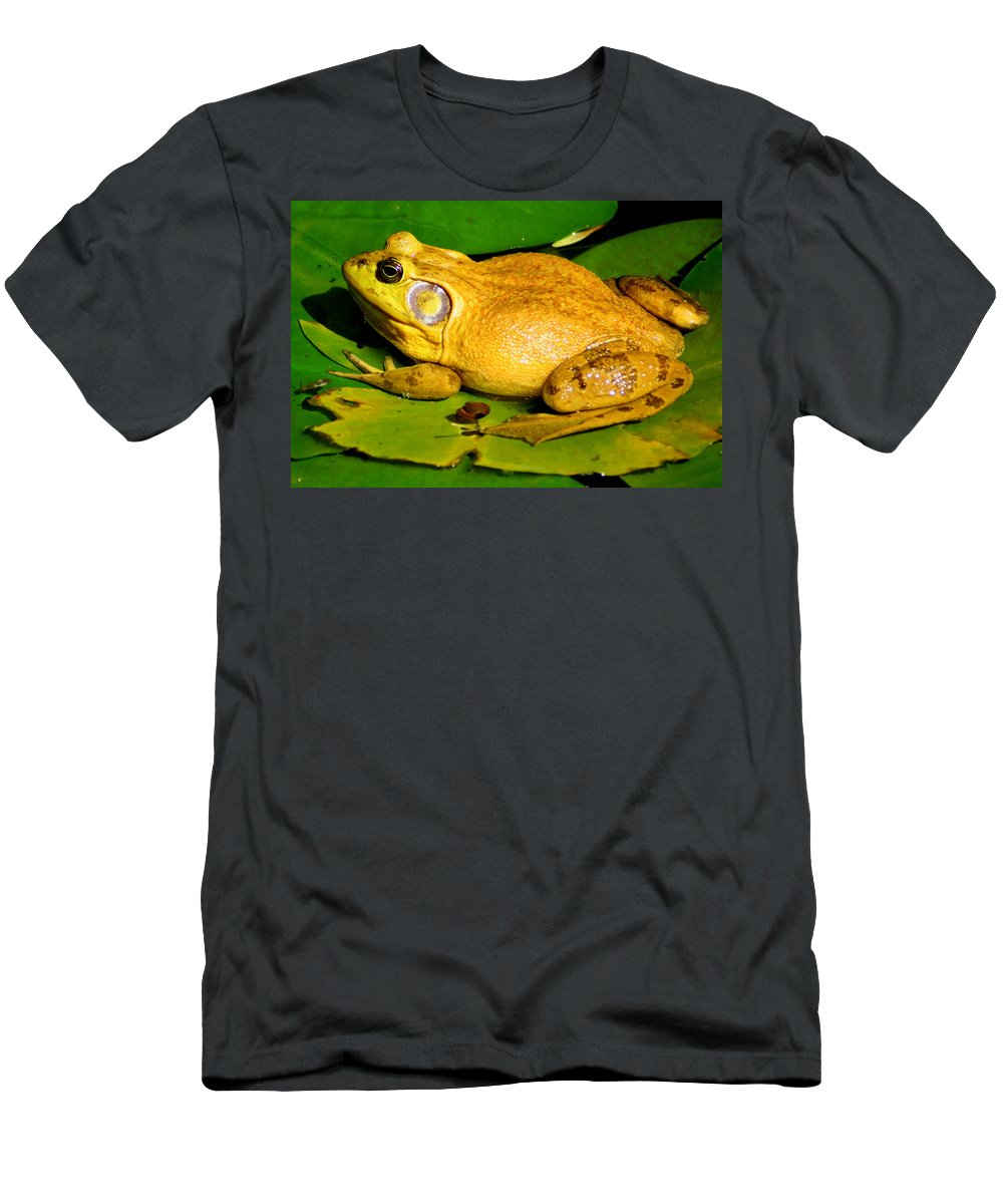 American Bullfrog Men's T-Shirt (Athletic Fit) featuring the photograph Its My Pad by Laurel Talabere