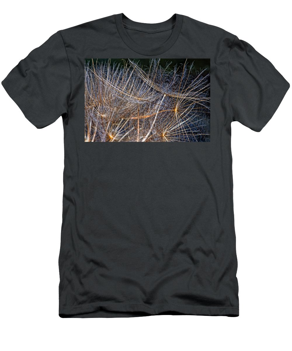 Asteraceae Men's T-Shirt (Athletic Fit) featuring the photograph Journey Inward by Steve Harrington