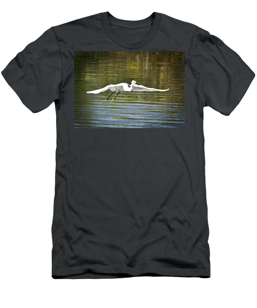 Snowy Egret Men's T-Shirt (Athletic Fit) featuring the photograph Just Soar by Saija Lehtonen