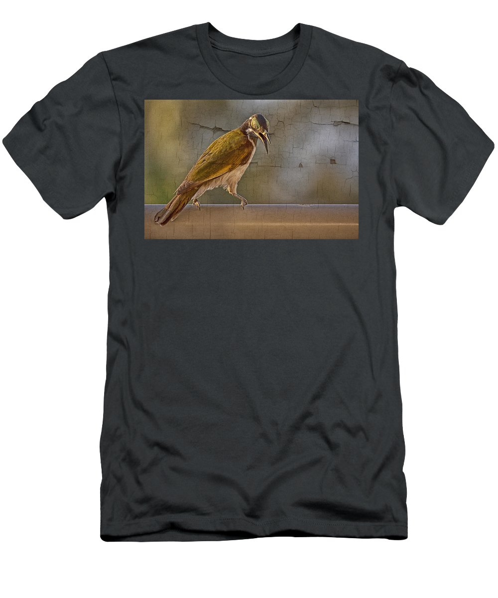 Blue Faced Honeyeater Men's T-Shirt (Athletic Fit) featuring the photograph Juvenile Blue Faced Honeyeater V2 by Douglas Barnard