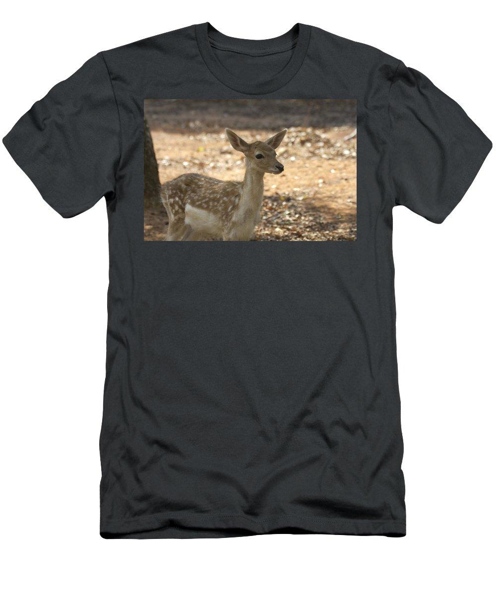 Juvenile Deer Men's T-Shirt (Athletic Fit) featuring the photograph Juvenile Deer by Douglas Barnard