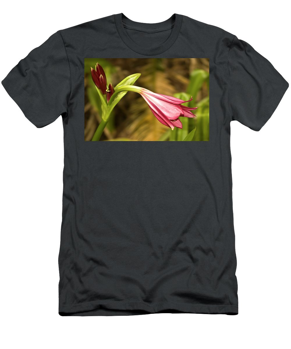 Lily Men's T-Shirt (Athletic Fit) featuring the photograph Lily In Pink by Carolyn Marshall