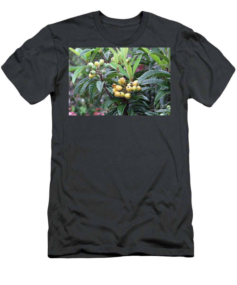 Fruit Men's T-Shirt (Athletic Fit) featuring the photograph Loquats In The Rain by Mary Deal
