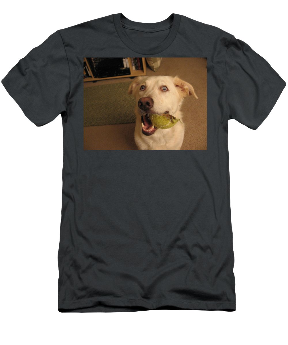 Dog Men's T-Shirt (Athletic Fit) featuring the photograph Lord Please Send Me A New Whole Ball by Amy Hosp