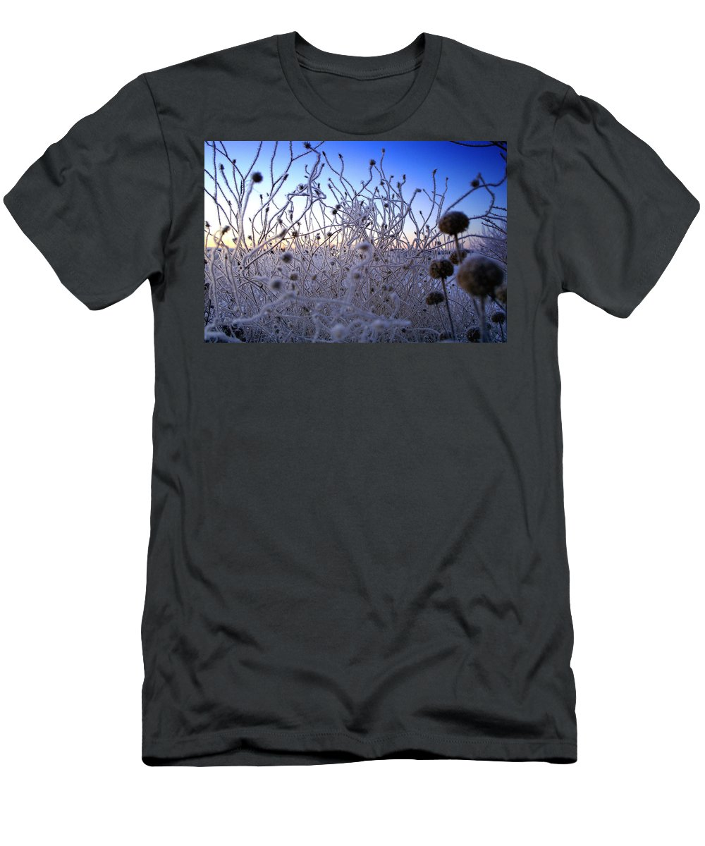Frost Men's T-Shirt (Athletic Fit) featuring the photograph Magic Winter Morning by Ellen Heaverlo